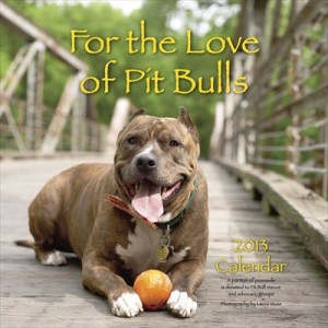 For the Love of Pit Bulls 2013 Calendar