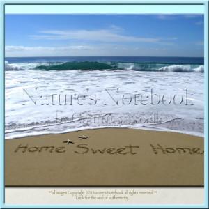 homesweethomewatermarkfornaturesnotebook_com