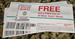 borax coupon