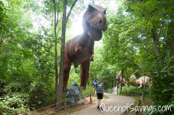 Dinosaur World 7