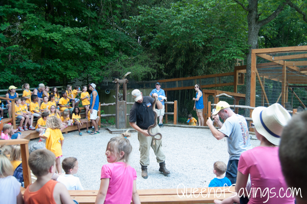 Kentucky Down Under Zoo Pet Show
