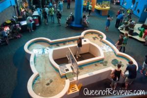 Ripley's Aquarium 5