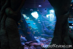 Ripley's Aquarium 2