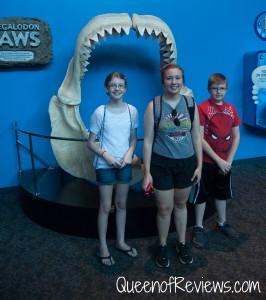 Ripley's Aquarium 34