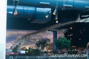 Ripley's Aquarium 13