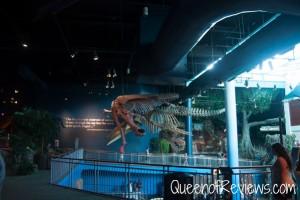 Ripley's Aquarium 20