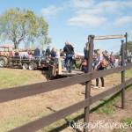 Fiddle Dee Farms Hayride