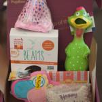 PupBox Birthday Items