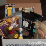 Thanksgiving Themed November Box from Pooch Perks
