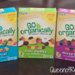 USDA Certified Organic Fruit Snacks from Go Organically