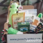 Cinco de Mayo Box from Pooch Perks