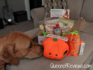 Getting Ready for Halloween with Pooch Perks