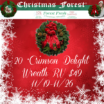 20″ Crimson Delight Wreath from ChristmasForest.com + Giveaway