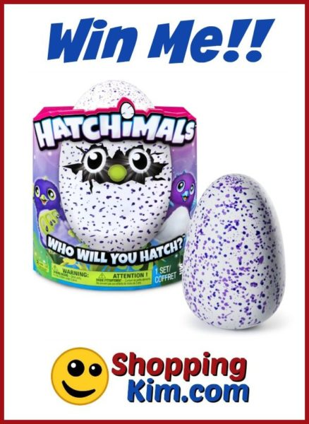 Hatchimals Giveaway