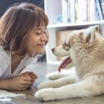 How Can an Automatic Pet Feeder Keep Your Pet Healthy?