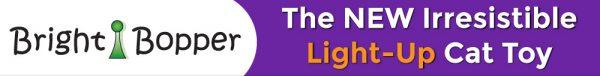 Bright Bopper Logo
