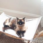 Luxury Cat Hammock – Strong and Sturdy with Easy Installation by Pet Magasin