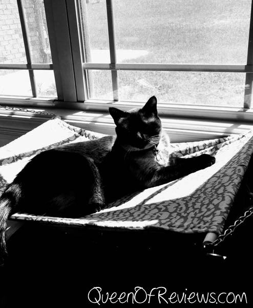 Luxury Cat Hammock Mocha Black and White