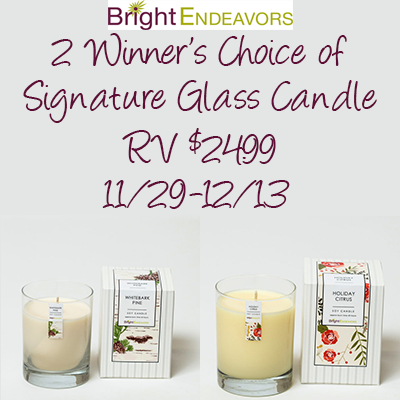 Bright Endeavors Holiday 2017 Giveaway